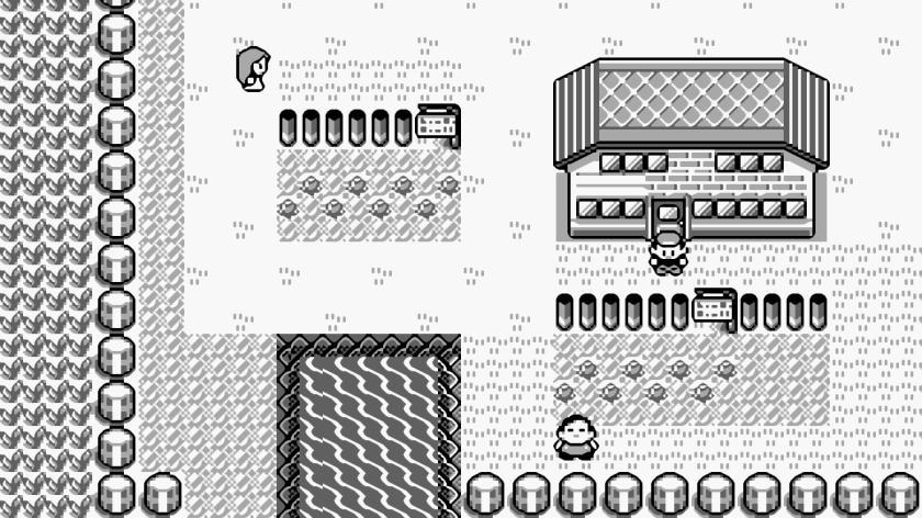 Video Game ชุด Pokemon